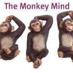The Inner Monkey & And Ego Death